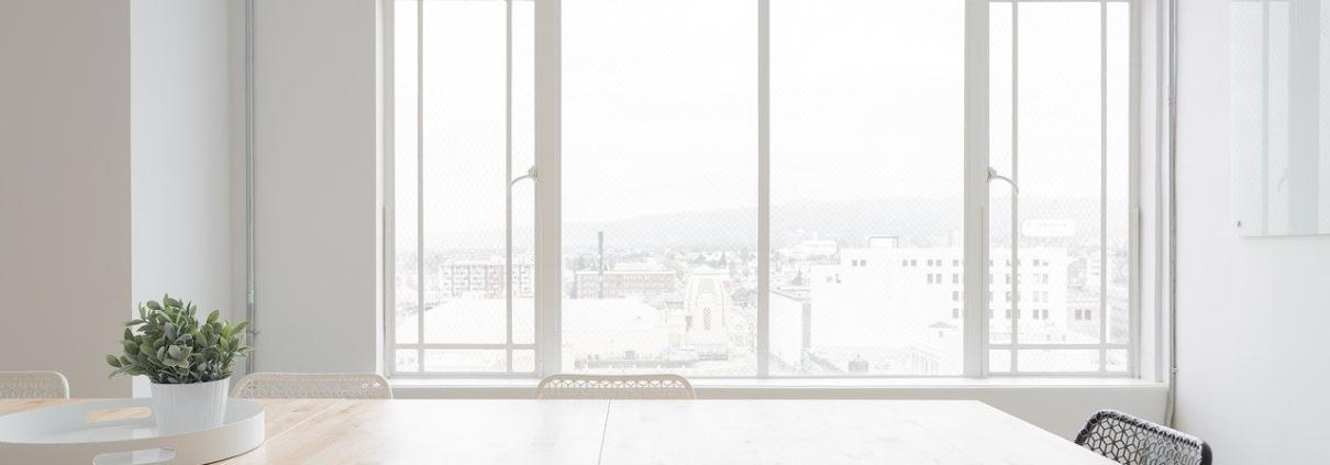 Moskitiera Roltex na oknie